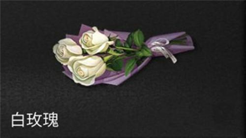 明日之后白玫瑰獲取攻略