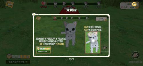 小森生活猫咪怎么玩 小森生活猫咪玩法介绍